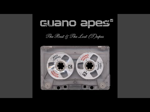 guano apes your song