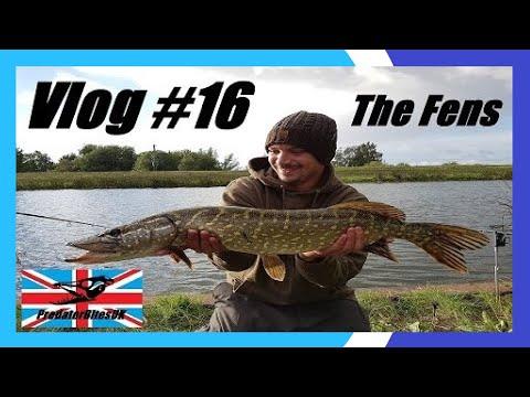 Vlog #16 - Predator Fishing Fenland River (Trip Down Memory Lane) - PredatorBitesUK
