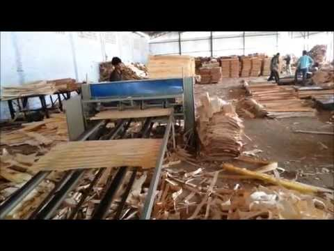 Spindleless Log Peeling Veneer Production Line Jamuna