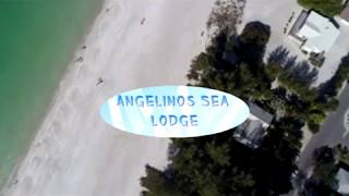 Bird Tour of Angelinos Sea Lodge