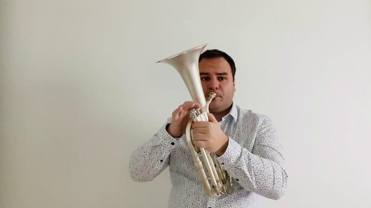 Romanian Folk Dances (Béla Bartók arr. Jack Lythaby) Featuring Anthony Galinier (Tenor Horn)