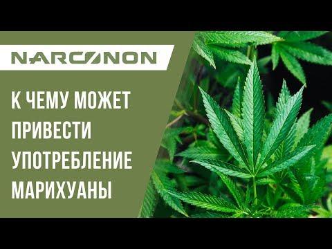 Последствия кто курит коноплю за употребления марихуаны в рб