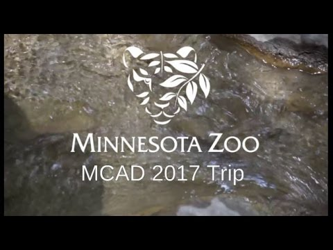 Minneapolis Zoo 2017 [EDDIEventures!]