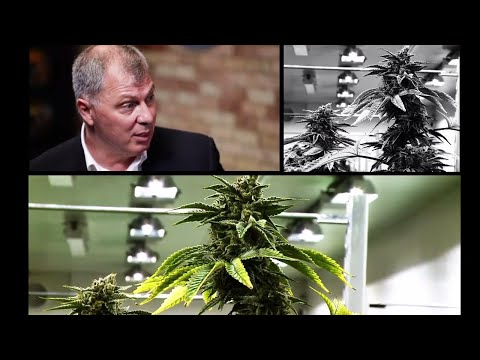 Commissioner Randy Ambrosie Talks Cannabis And The CFL