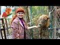 Поделки - Натуралистический центр. Лепим из ГЛИНЫ. Животные. Зоопарк.