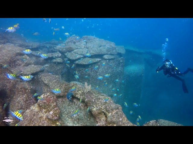 A December to remember! Diving and snorkeling in Loreto, B.C.S., Mexico.