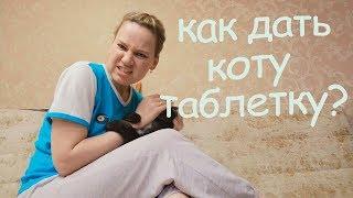 VLOG: Таблетки СТОП-ИНТИМ для кота
