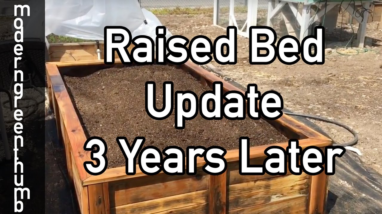 Raised Bed Update 3 years Later