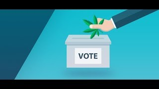 These 4 states could see major marijuana reform this midterm election