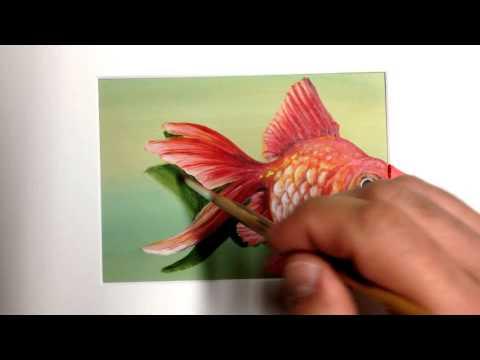 Best Of 3d Art Illusion Paintings 3d Eka Peradze. Drawing Fish