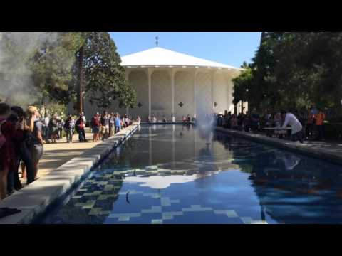 Explode! Caltech Chemistry Class Sodium, Potassium, Cesium Reacts With Water