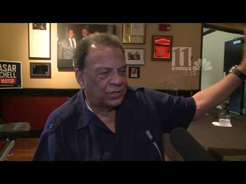Andrew Young on Stone Mountain Confederate carving: I