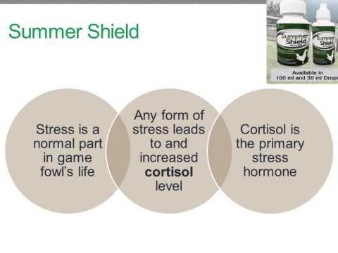 ALL-NATURAL Game Fowl  Supplements 3SKATT TRADING INC.