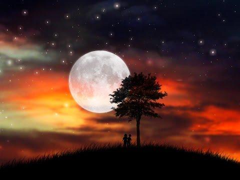 A Sky Full Of Stars [Lyrics HD] Coldplay