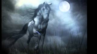 Silvermoon - Donkeyboy