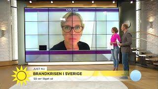 """Brandkrisen i Sverige """"Frivilliga är en jätteviktig resurs"""" - Nyhetsmorgon (TV4)"""