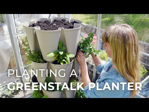 Grow a Vertical Herb Garden in a Greenstalk Planter