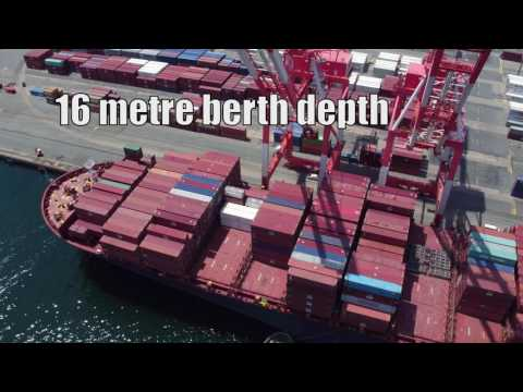 First 10,000+ TEU vessel at Port of Halifax