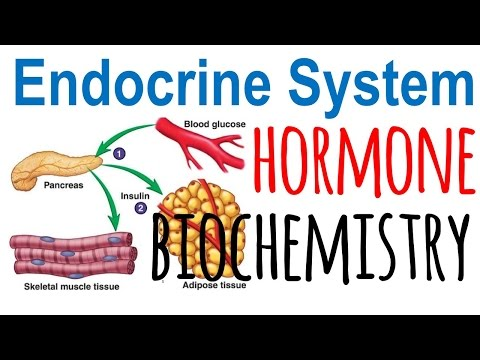 Hormone biochemistry
