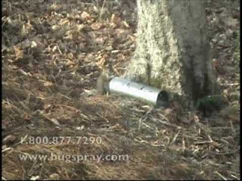 Squirrel pipetrap