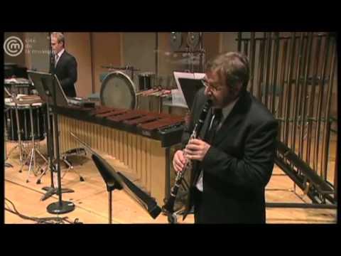 BRUNO MANTOVANI Concerto de Chambre nº1