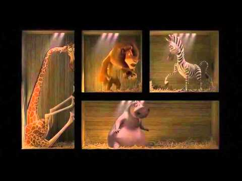 Madagascar - ZOO Transfer