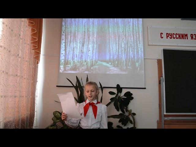 Изображение предпросмотра прочтения – ВиолеттаПтицина читает произведение «Берёза» Н.М.Рубцова
