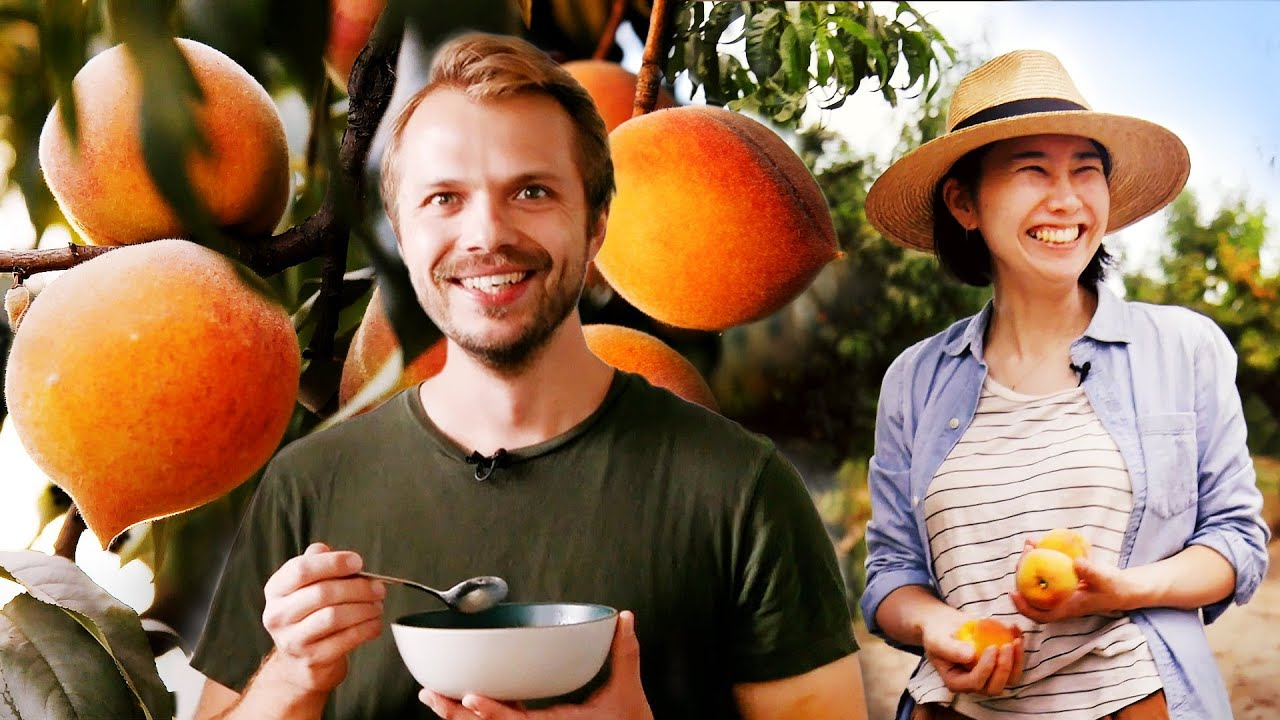 Andrew and Rie Discover What Makes The Best Peaches