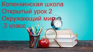 Копенкинская школа. Открытый урок 2. Окружающий мир. 3 класс