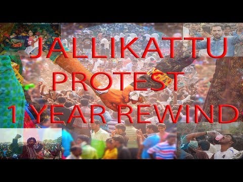 Tamil Nadu Historic Jallikattu Protest Powered by Youngsters   One Year Special report