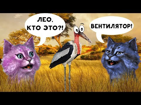 Я СЪЕЛА ЛЕО?! ДИКАЯ САВАННА В РОБЛОКС Roblox Wild Savanna