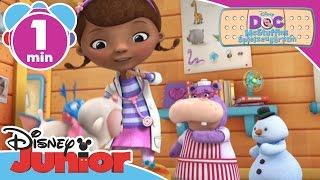 Bring dein Tier zum Tierarzt! ♫ Doc McStuffins ♫ | Disney Junior Musik