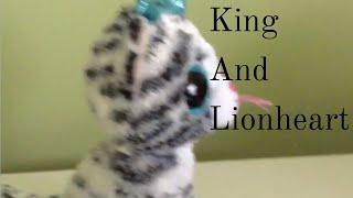 King And Lionheart- Beanie Boo Music Video