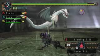 Monster hunter freedom unite online White fatalis round 1