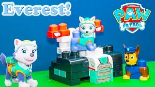 PAW PATROL Nickelodeon Paw Patrol Everest Blocks a Paw Patrol Video Toy Unboxing