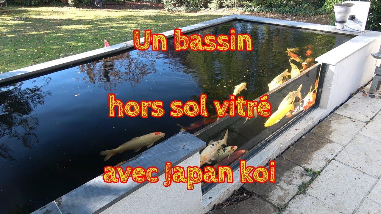 un bassin hors sol vitre avec japan koi