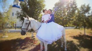 Наталья и Андрей. Wedding Hightlights