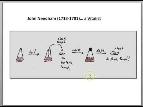 Spontaneous generation of bacteria... Needham and Spallanzani