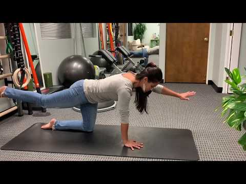 Core Progression: Quadruped!