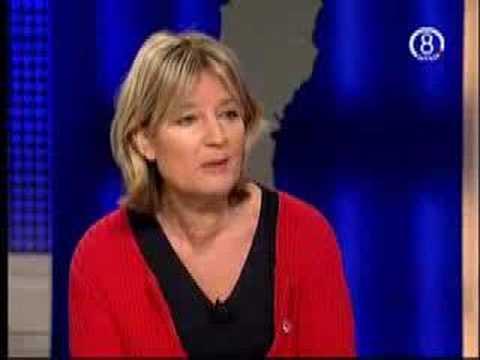 SD I MEDIA: Sverige i FOKUS - del 3