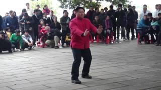 2011.Zhang Shao Feng.Five Ancestor Style Sanchin (Go Cho)