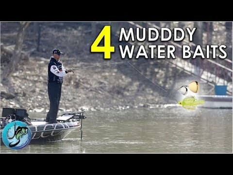 Top 4 Muddy Water Lures For Bass Fishing In Pre-Spawn | Dirty Water Tips