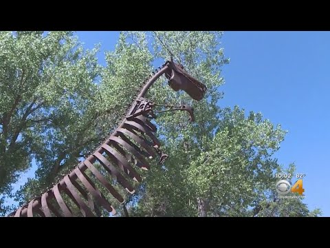 Beloved Fort Collins Attraction Closing After 34 Years