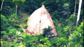 5 Amazon Jungle Discoveries That Cannot Be Explained