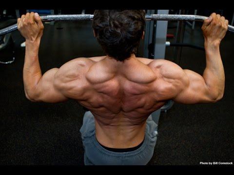 Rutina de Ejercicios para Espalda y Bíceps - Entrenamiento