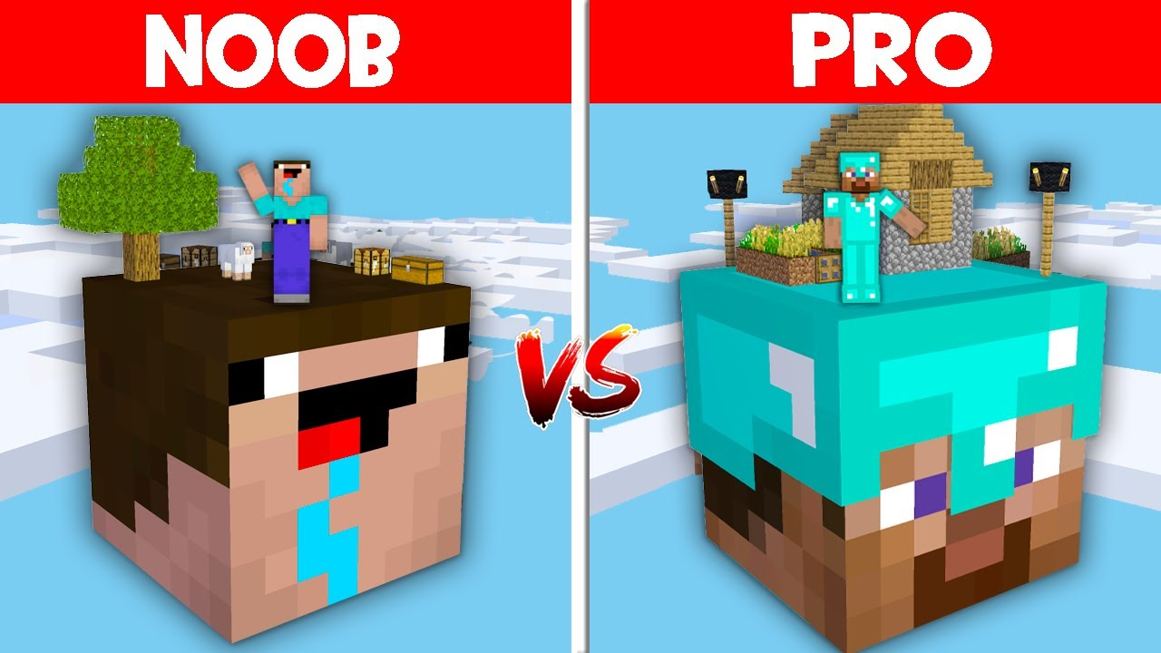 Minecraft NOOB vs PRO: NOOB FOUND A SECRET HEAD BLOCK BASE IN NOOB HEAD BLOCK! (Animation)