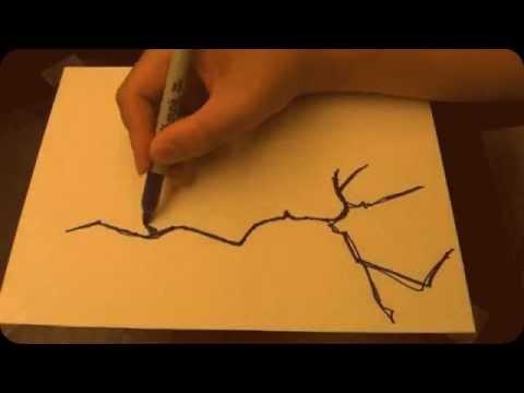 One Line Art Animation : Single line drawing: portrait no.6 youtube