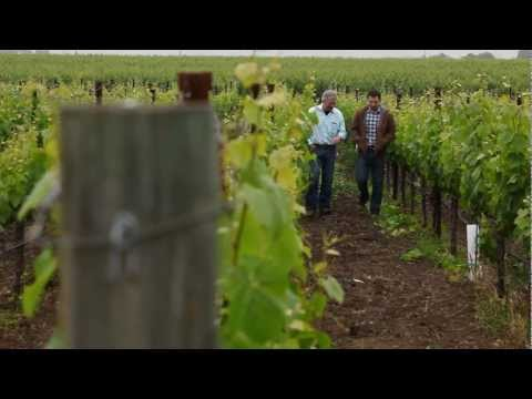 Flora's 100 - Webisode 6 - Family in the Vineyard - click image for video