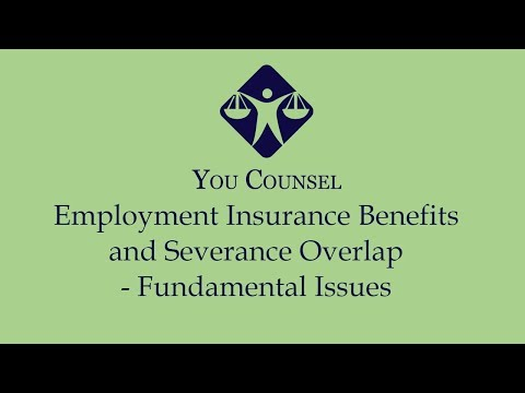 Employment Insurance Benefits and Severance Overlap - Fundamental Issues