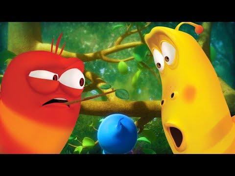 larva---birds-nest-|-cartoon-movie-|-cartoons-for-children-|-larva-cartoon-|-larva-official
